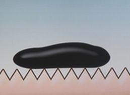 かたつむりの殻の表面